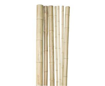 """Bambusrohr, """"Tokio"""", unbehandelt, 4-6cm x 180cm, natur"""