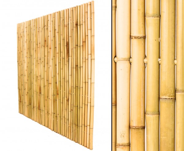 Bambuszaun 180 x 180cm, hellgelblich starr aus Moso Bambus mit Durch. je 3,5 bis 4cm