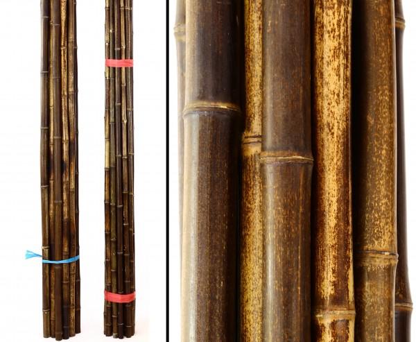 """Bambusrohr """"Nigra"""", braun schwarz, Durch. 4- 4,5cm, Länge 240cm"""