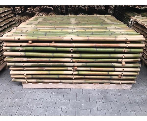 Bambuselement naturgrün 200x180cm starr mit Rohren von 4- 5cm als B-Ware