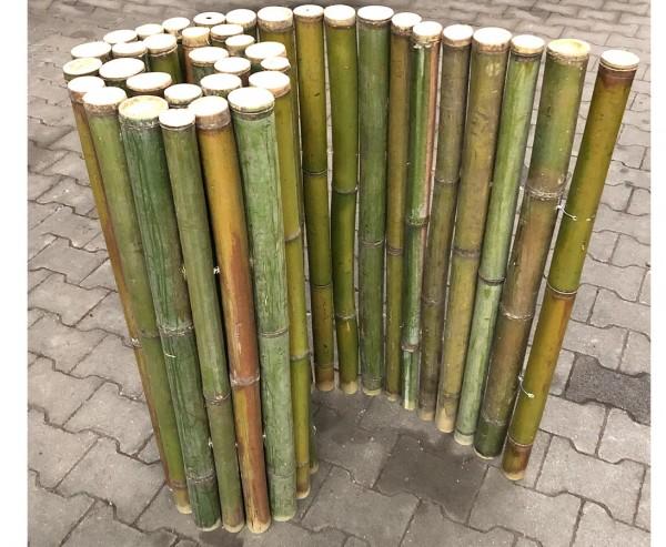 """Bambus Roll Zaun naturgrün """"Big Green"""" 100x200cm mit 4 bis 6cm, B-Ware"""