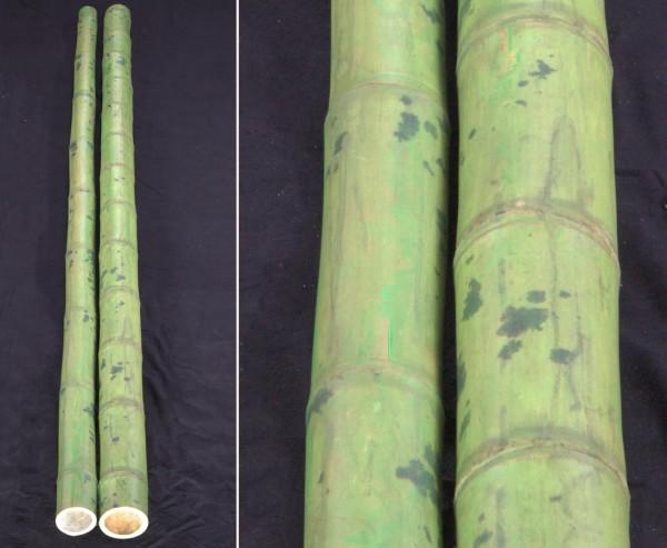 Bambusstange grün, Kolum naturnah gefärbt, sehr schwach konisch, Durch. 10 bis 12cm, Länge 295cm