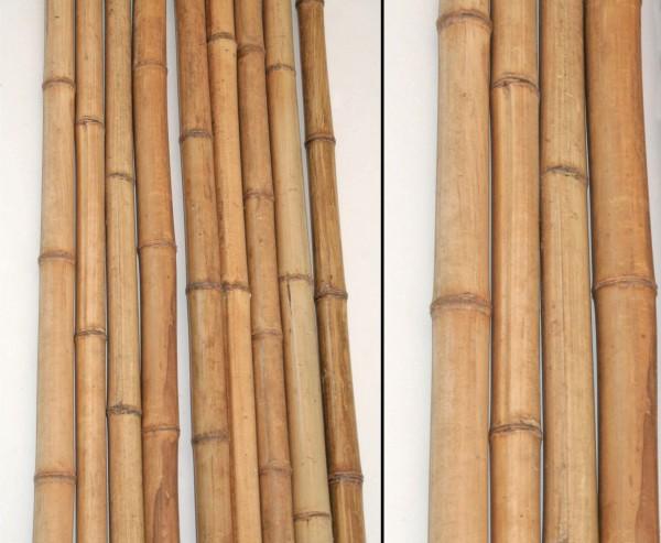 Bambusrohr 200cm gelbbraun Durch. 2 bis 3cm, hitzebehandelt