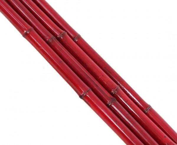 Roter Bambus gefärbt 200cm mit 2,8 bis 4cm, Moso Rohr