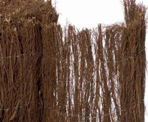 Eine Heidekrautmatte eignet sich sehr gut als Sichtschutz für den Garten