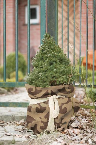 Jutesäckchen für den Winterschutz von Kronen, im Ornament Design H:80 x B:60cm, braun/ beige farbig