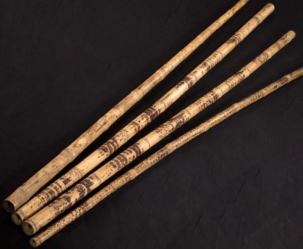 Bambusstange Tutul 300cm gelb schwarz gefleckt mit 4-5cm