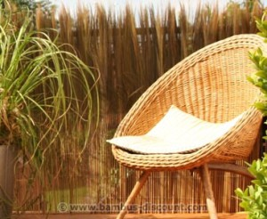 Praktischer Sichtschutz mit Schilfrohrmatten von bambus-discount.com