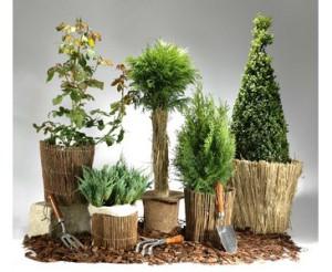 Schutzmatte für Pflanzen im Garten
