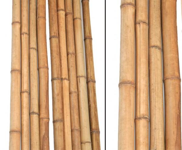 Bambus natur gelbbraun 180cm Durch. 3 bis 4cm, Madake hitzebehandelt