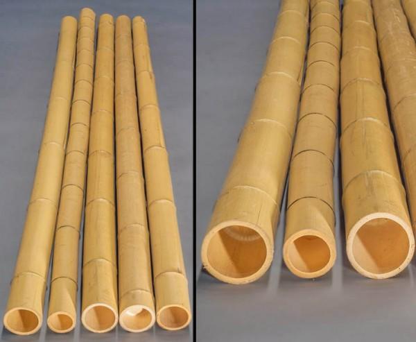 """Bambusrohr """"Moso"""" gelb, gebleicht, Durch. 9- 10cm, Länge 300cm"""