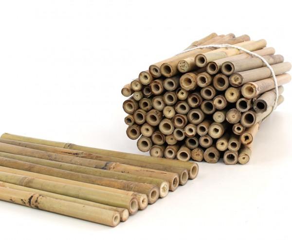 Bambusrohr Tonkin 30cm natur Durch. 1,4 bis 2,4cm