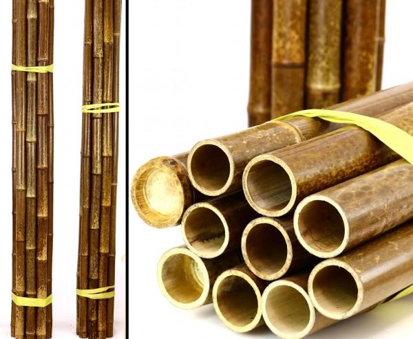 Tigerbambus Rohr Boryana mit ca. 285cm mit 4,8 bis 6cm, braun schwarz gefleckt