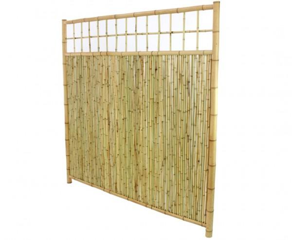 """Bambus Sichtschutz mit Gitter oben """"TEN New Line"""" mit 180 x 180cm"""