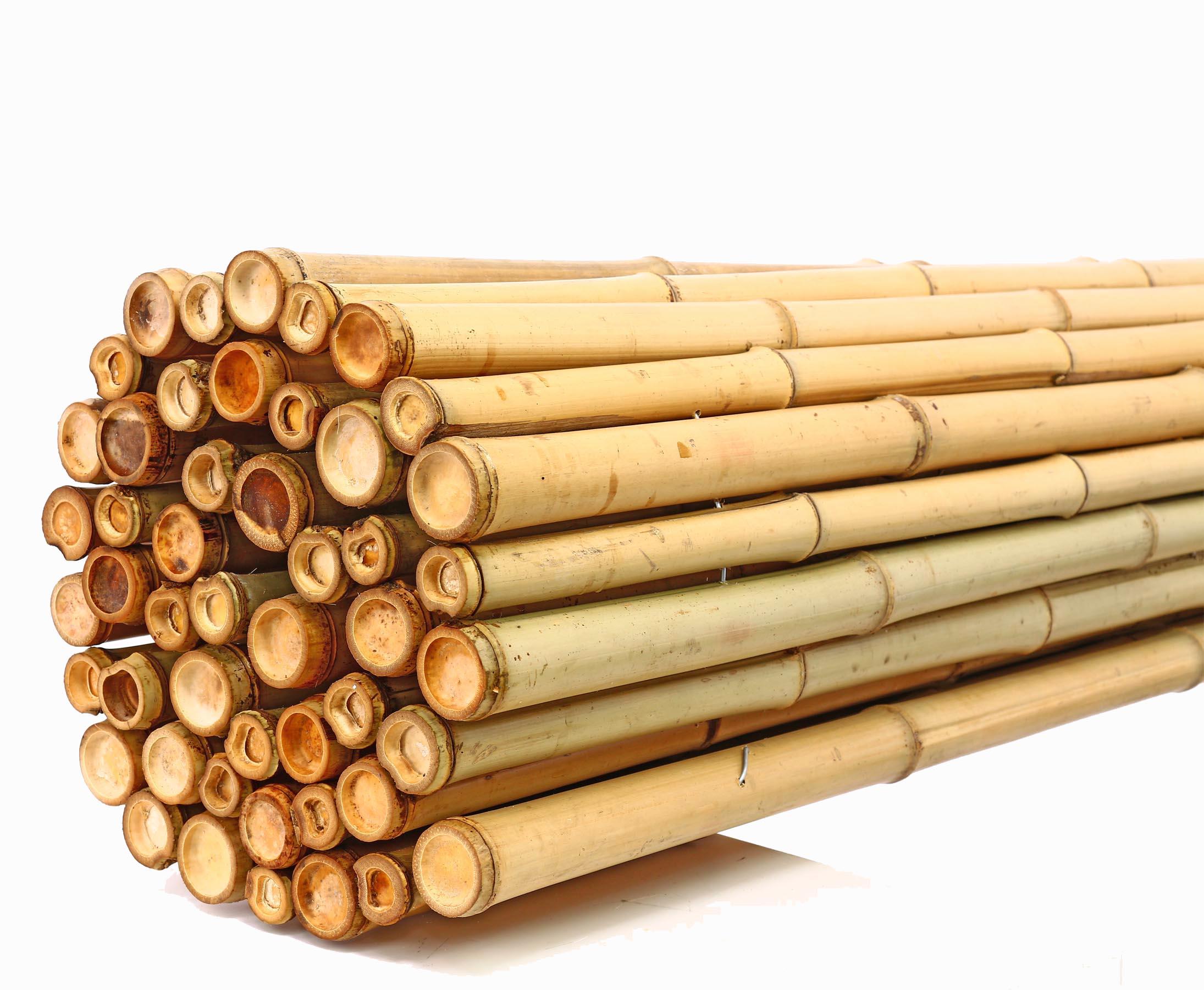 bambus-discount.com Bambus Sichtschutz Bali Heavy 180 x 250cm Sichtschutz aus Bambus Rollmatten