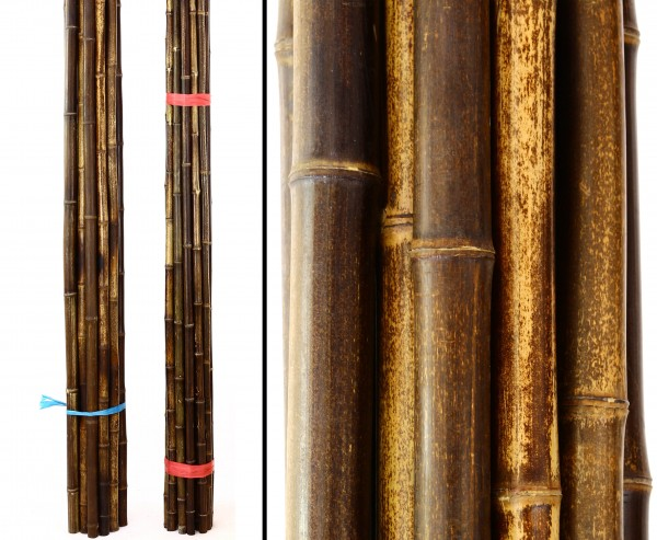 Bambusrohr naturbelassen in braun schwarz, Durch. 3,5 bis 4,0cm, Länge 400cm