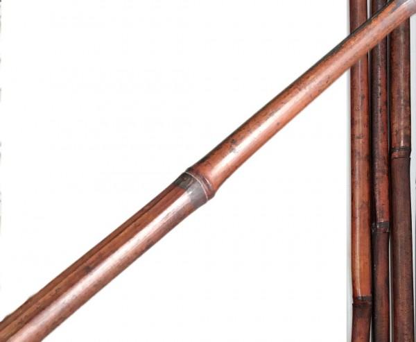 Bambusrohr mahagoni farbig in rot-braun ca. 310cm, konisch und gefärbt, Durch. ca. 4,5 bis 5,0cm