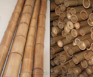 Bambusrohr-gelbbraun4O6gURSTIWHRx
