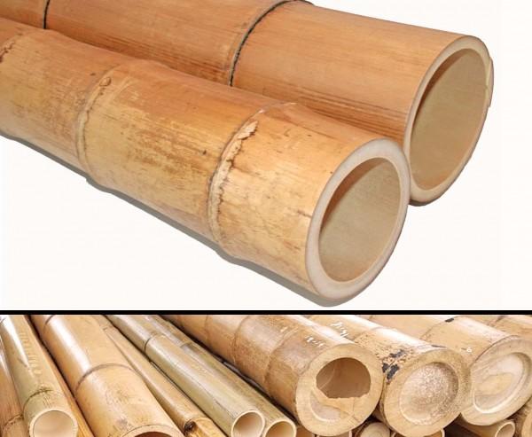 Bambusstange 300cm gelbbraun Durch. 12 bis 14cm, Moso Natur hitzebehandelt