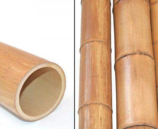 Bambusrohr natur gelbbraun 150cm Durch. 8 bis 10cm, Moso unbehandelt getrocknet