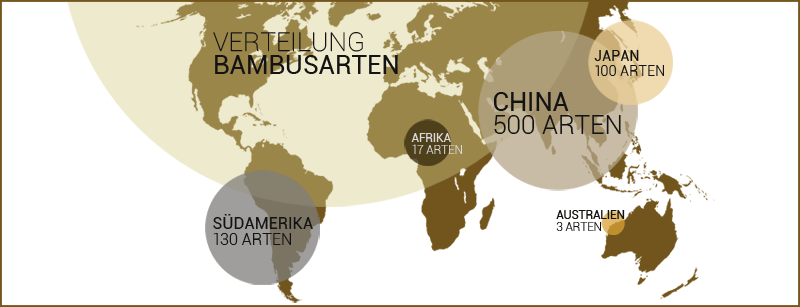 Bambus-Weltkarte