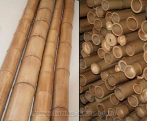 Bambusrohr kaufen für den Garten