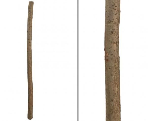 Zaunpfosten für Haselnusszaun naturbelassen 7-8cm mit 170cm