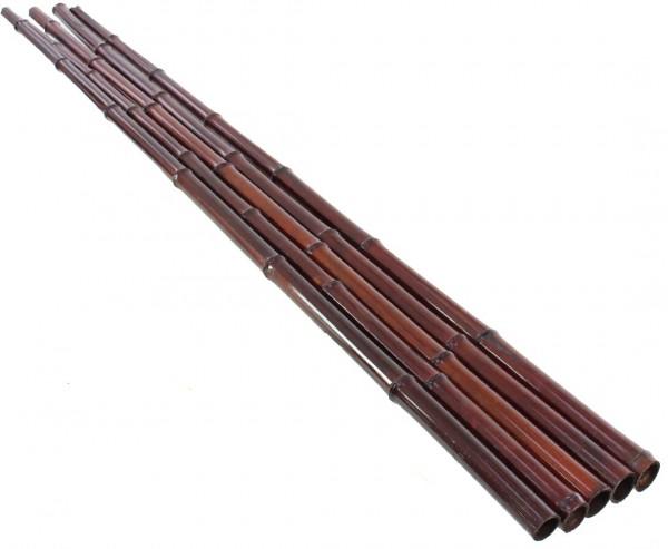 Bambusrohr in mahagoni gefärbt 200cm mit 4,8 bis 6,0cm, Moso Bambus