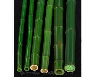 Bambusrohr B-Ware grün mit Druch. 3,5 bis 5cm gefärbt, Länge 300cm