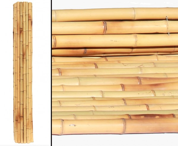 Bambusrollzaun Moso gelb gebleicht mit 150x200cm, flexibel verbunden mit Bambusrohre 4,3- 4,7cm