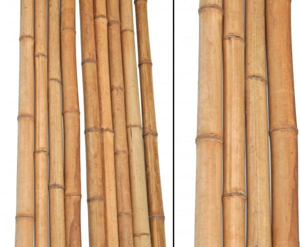 Bambus 290cm gelbbraun Durch. 4 bis 4,5cm, Moso Natur hitzebehandelt