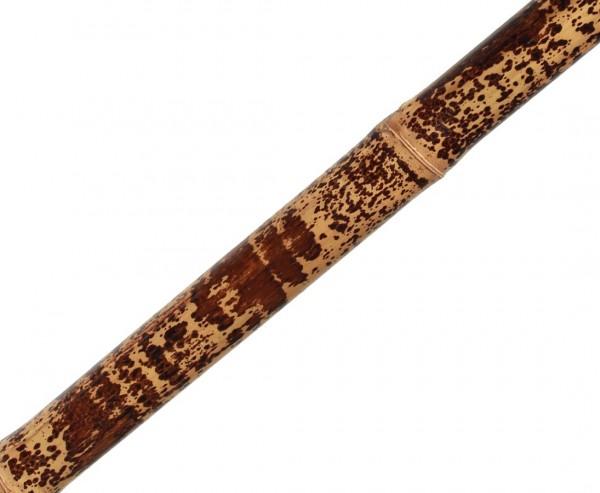 Tutul Leopardenbambus 200cm gelb schwarz gefleckt mit 7-8cm