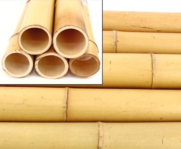 """Bambusrohre """"Moso"""" gebleicht, Durch. 8- 9cm, Länge 200cm"""