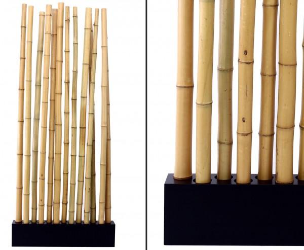 """Bambus Raumteiler """"Paris5"""" mit ca. 205x90x12cm, Sockel und 13 Rohre gelb 5- 6cm"""