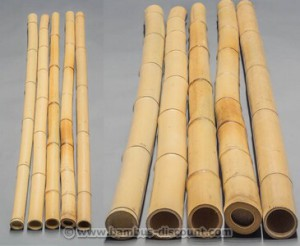 Bambusrohr gelb von bambus-discount