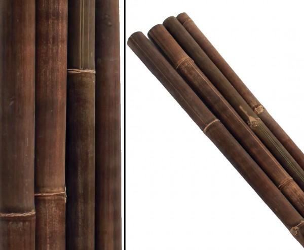 Bambusrohre, braun schwarz, aus Indonesien, behandelt mit Borsalz, Durch. 5 - 6cm, Länge 570cm