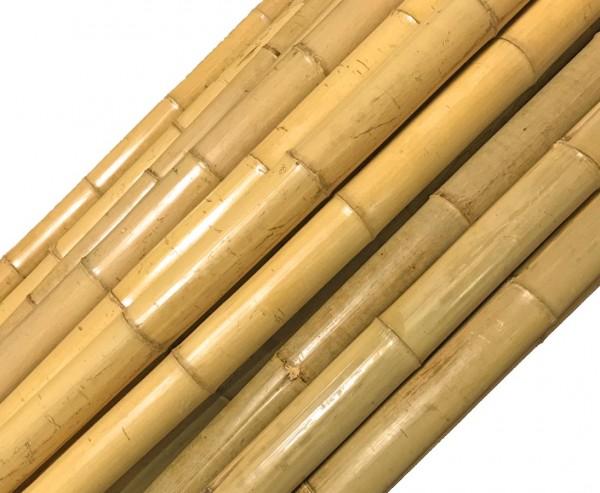 """Bambusrohr """"Tokio"""" lackiert mit 2,8 bis 3,5cm, Länge 200cm"""