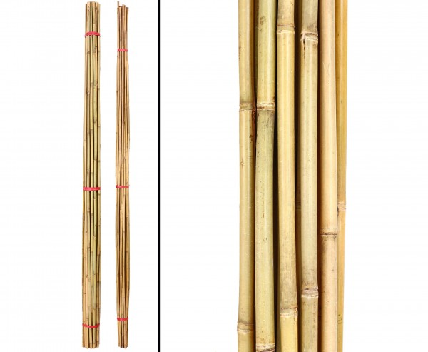 Bambusrohre Tonkin, gelblich, naturbelassen, Länge 400cm