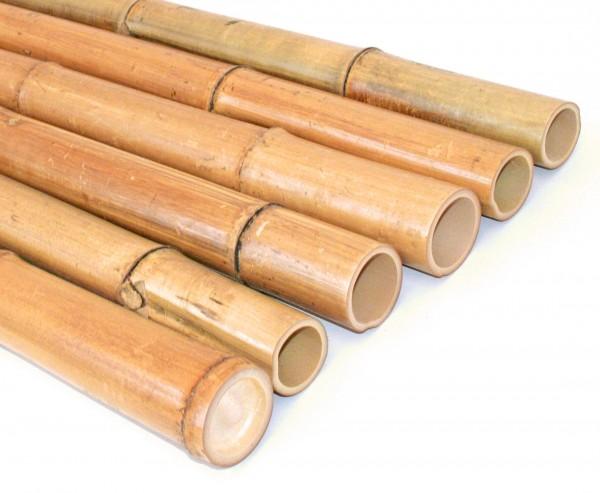 Bambusrohr 300cm gelbbraun Durch. 7 bis 8cm, Moso Natur hitzebehandelt