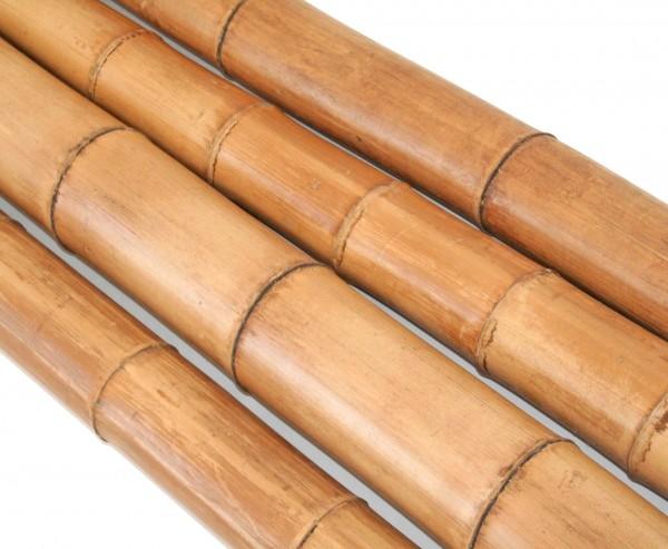 Bambusstange Moso natur 200cm Durch. 8 bis 9cm, gelbbraun hitzebehandelt