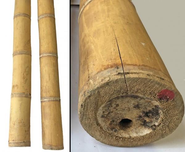 Bambusstange natur, Guadua sehr schwach konisch, gelb braun, Durch. 12,5- 15cm, Länge 600cm