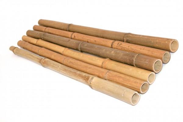 Bambusrohr Moso natur 100cm Durch. 4 bis 5cm, unbehandelt getrocknet gelbbräunlich
