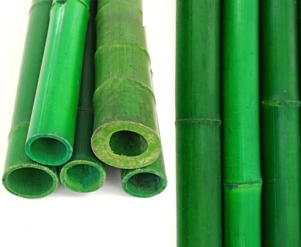 Moso Bambusrohr 200cm grün gefärbt mit 200cm Durch. 8 bis 10cm