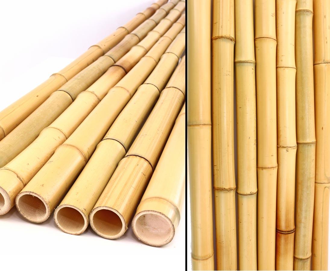 Bambusrohr gelb gebleicht Moso Bambus Durch Länge 300cm 12-15cm
