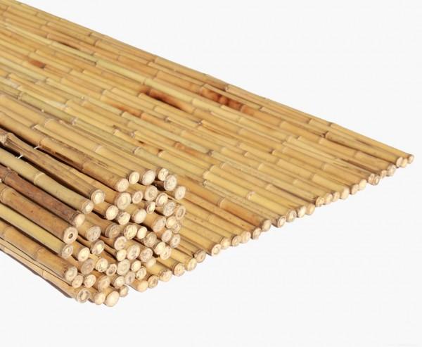 Bambusrollzaun, Moso gelb gebleicht mit 180x240cm, Durch. Bambusrohre 2,5- 3cm