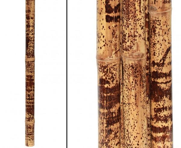 Tigerbambusrohr gelb schwarz gefleckt, behandelt mit Borsalz, Durch. 5- 6cm, Länge ca. 285 bis 300cm