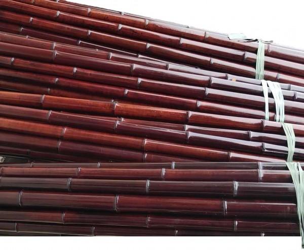 Bambus mahagoni farbig 200cm mit 2,8 bis 4cm, Moso Rohr gefärbt
