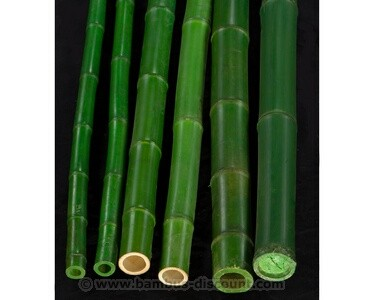 B-Ware Bambusrohr grün gefärbt Durch. 5- 6,5cm mit 300cm