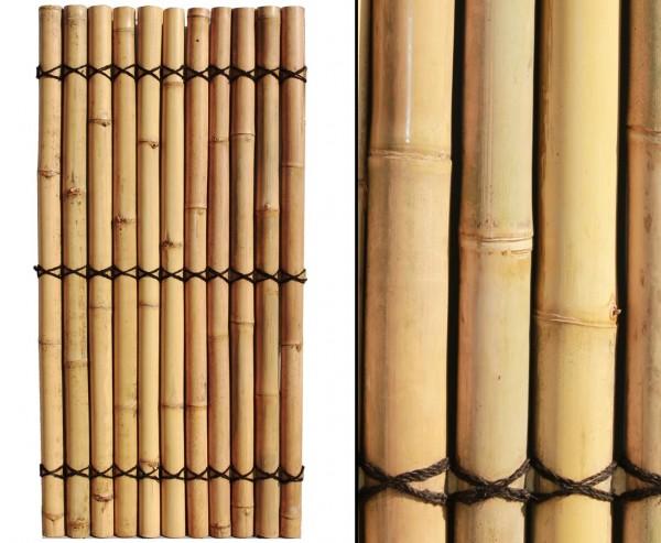 """Bambuswand """"Apas20"""" 180x90cm mit gelblichen Bambusrohren Durch. 9 bis 10cm"""