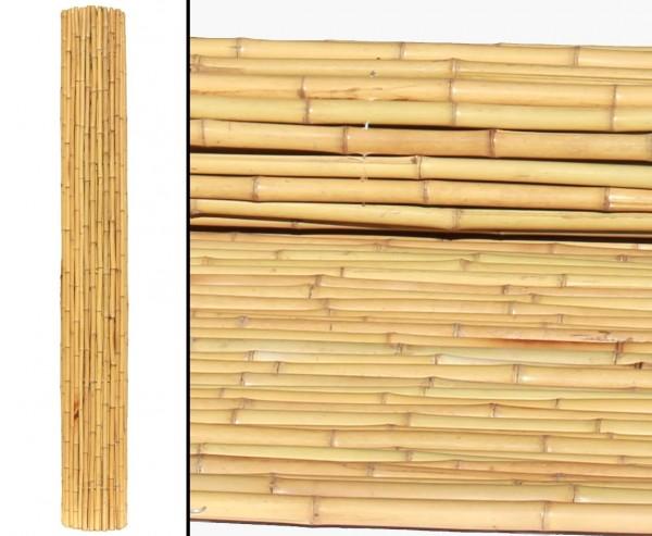 Bambusrollzaun Moso gelb gebleicht mit 240x240cm